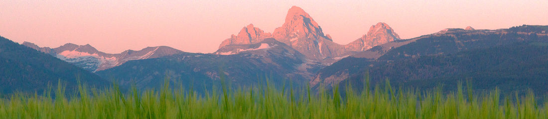 Nature, Wildlife, and Lifestyle Photography in the Grand Teton National Park Region and the American West.